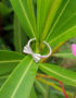 minimalist geometric bow silver ring silver jewelry