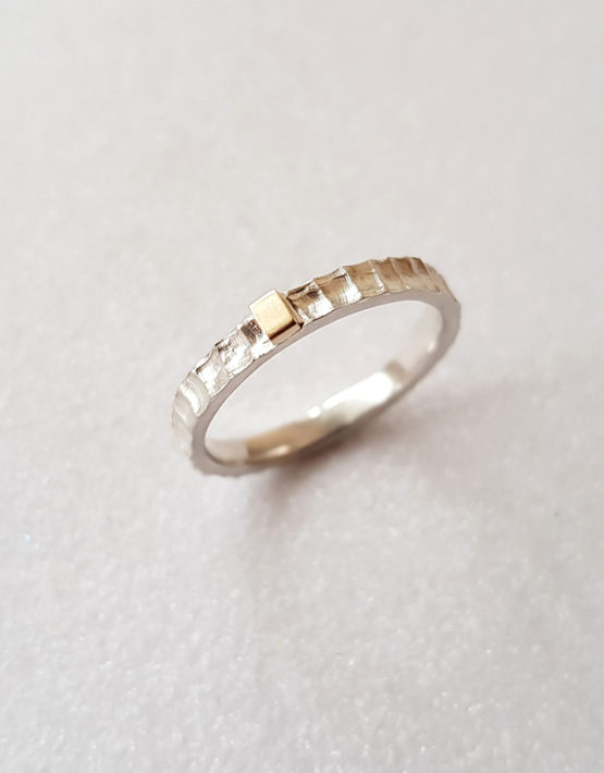 silver ring with gold accent